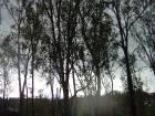 Lago Gualalupe_13